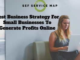 Best Business Strategy For Small Businesses To Generate Profits Online